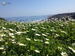 Mar Egeu